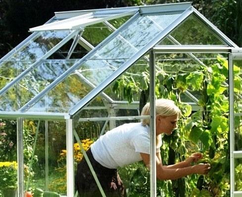 kasvuhoone-kasvuhooned