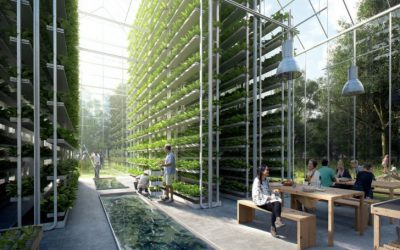 Arengusuunad aastaks 2030: millisd trendid ootavad meid järgmised 10 aastat taimekasvatust puudutavates teemades?