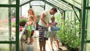 Kasvuhoone ja aiakaubad