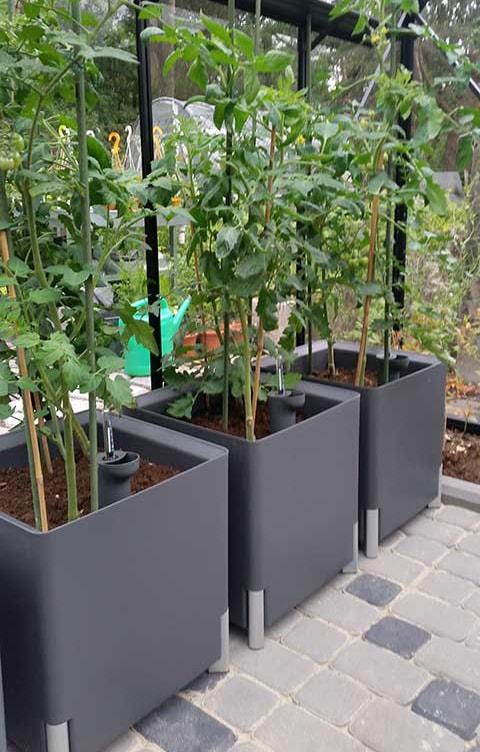 Kastmissüsteemiga-taimepott
