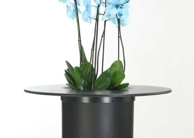 Lillepott-lauamooduliga