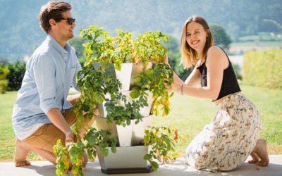 Kartulikasvatuse torn – kasvata juur- ja köögivilju ka rõdul või terrassil.
