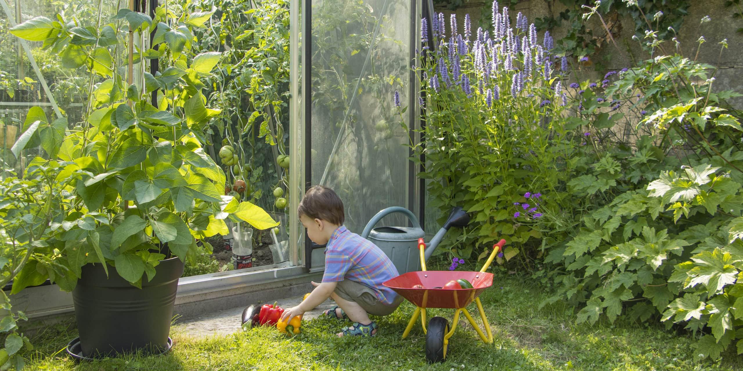 Kasvuhoone ja loodusharidus