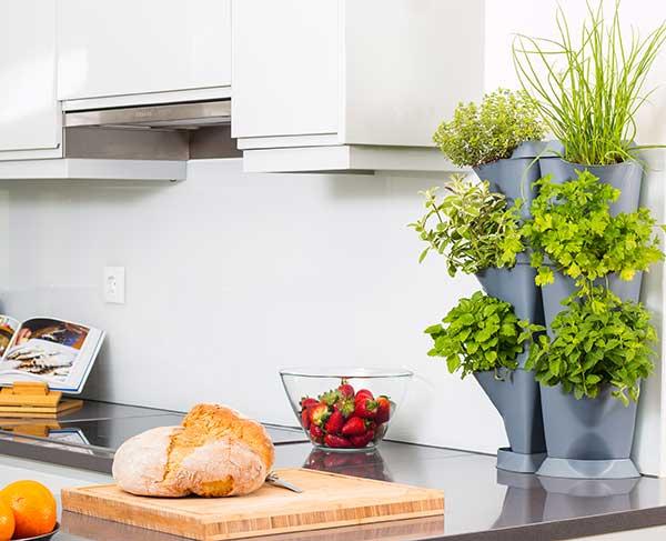 Vertikaalsed taimepotid Kööki vannituppa