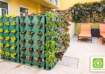 Vartikaalne aiandus rüdule