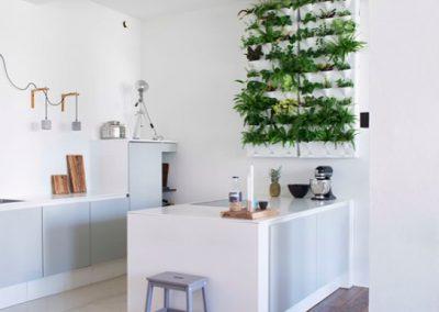 Vertikaalne_taimekasvatus köögis