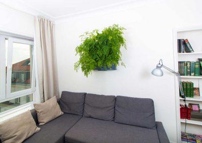 Vertikaalsed-lillepeenrad-elutoa-seinal_1200x776