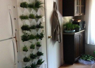 Vertikaalsed taimepotid