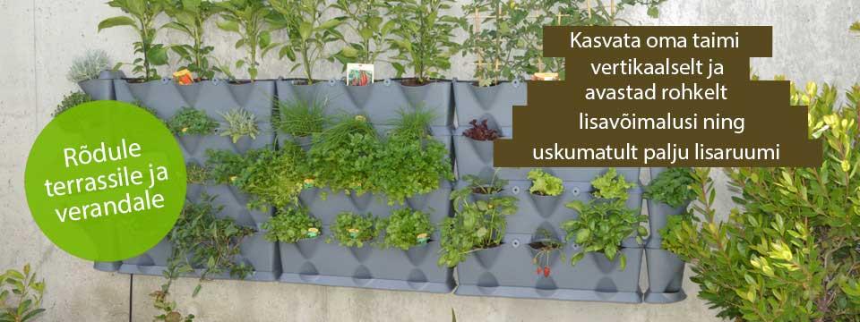 Vertikaalsed taimepotid rõdule terrassile verandale