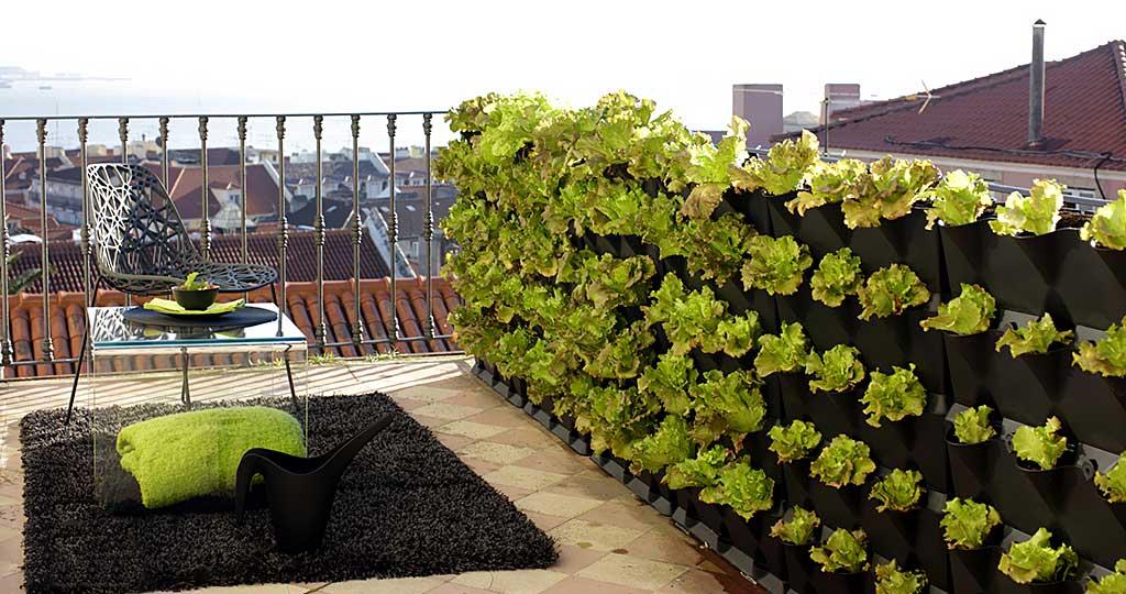 Vertikaalne taimesein rõdule, katusele