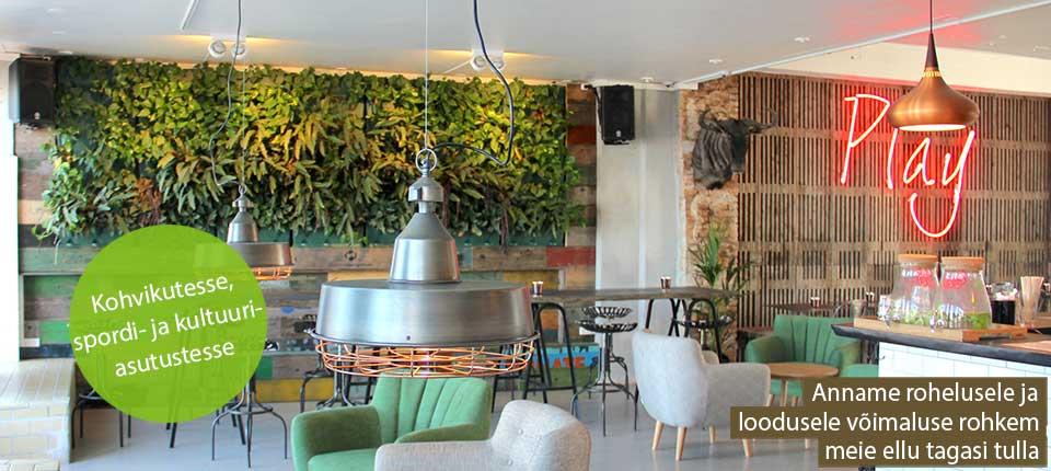 Vertikaalsed taimepotid kohvikutesse