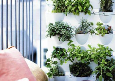 Vertikaalne taimekasvatus rõdul