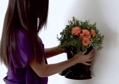 Vertikaalsed lillepeenrad (3)