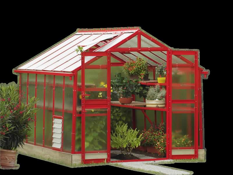 kasvuhoone-punane-800x600