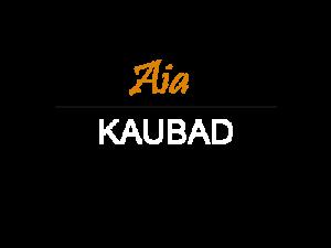 kate_aia_kaubad_400x300